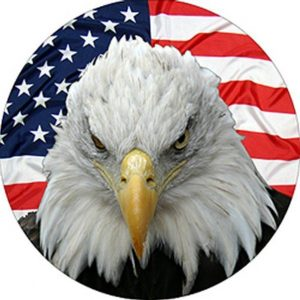 Eagle Flag Tire Cover
