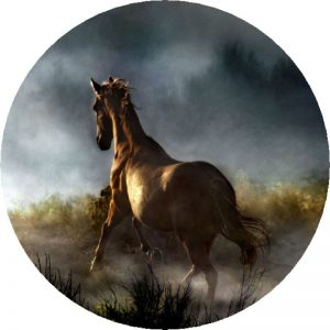 Horse in a Storm Tire Cover
