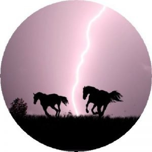 Horses Running from Lighting Tire Cover