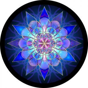 Blue Mandala Tire Cover