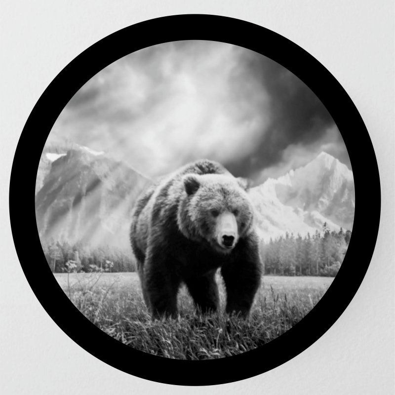 Halftone Bear Image Tire Cover