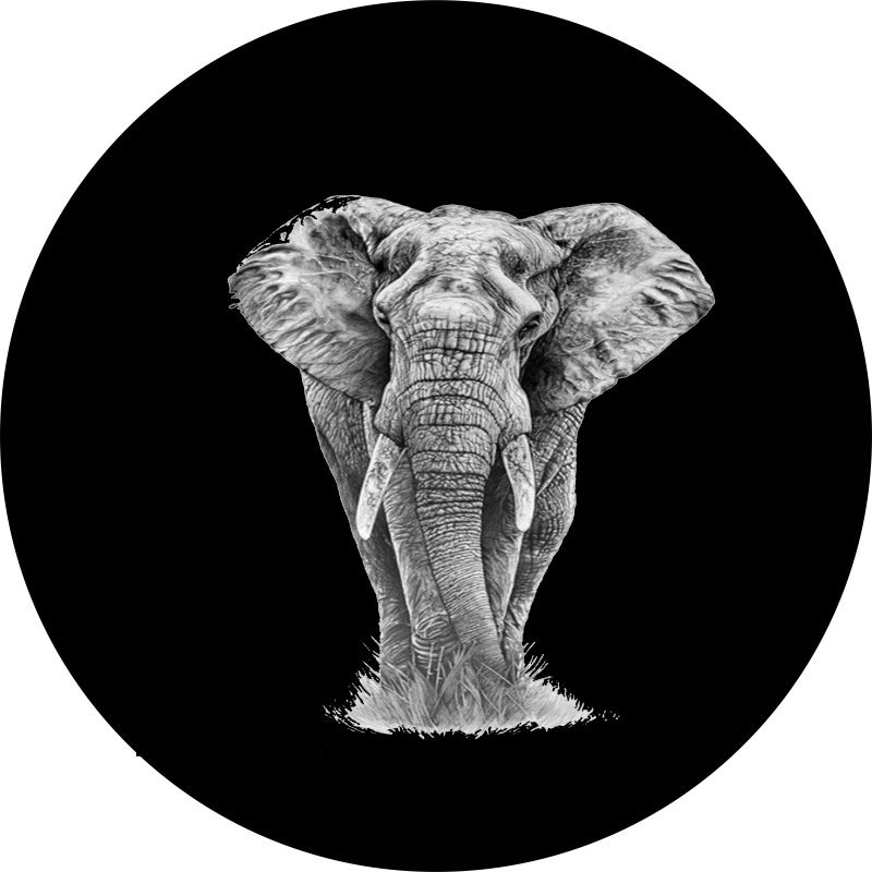 Magnificent Elephant Tire Cover
