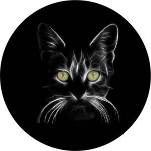 Black Cat Tire Cover