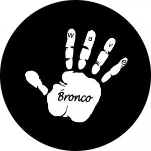 Bronco Wave Tire Cover