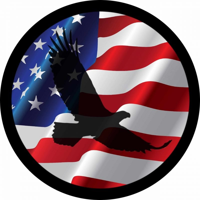 Eagle shadow on flag Tire Cover