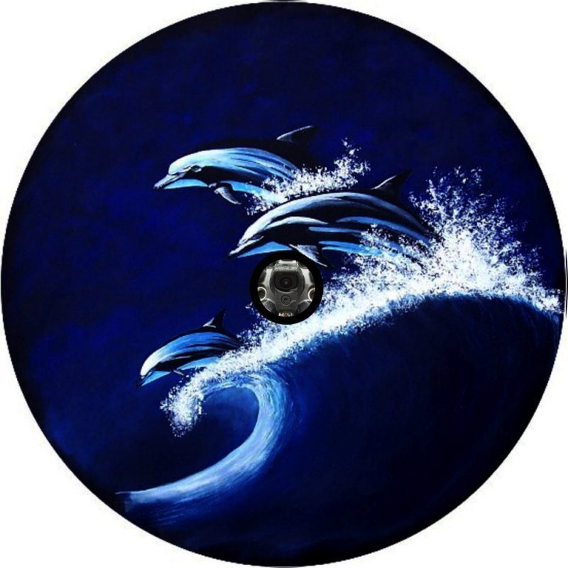 Racing Dolphins Back Up Camera Tire Cover